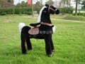 诸葛玩具马 运动型 2