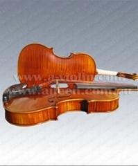 European Materials'violin