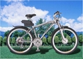 electric bicycle, e-bike,
