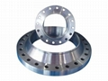 pipe fitting--carbon steel welding neck flange 3