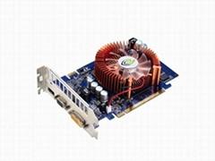 9500GT  (1024MB DDR2)