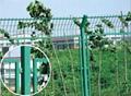 边框防护网