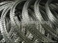 Razor Barbed Wire CBT-65 4