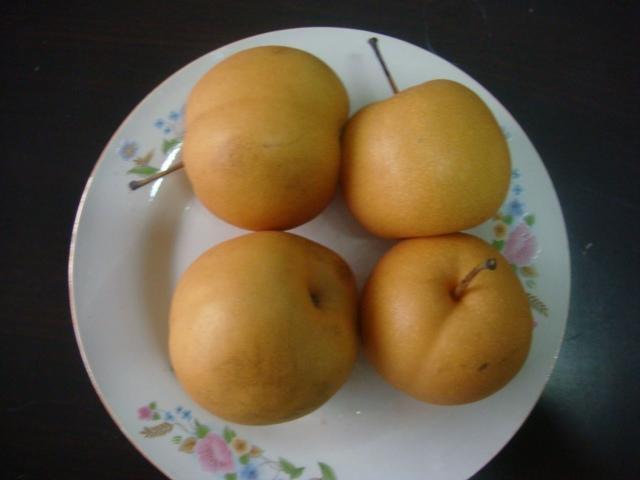 Fengshui Pear 2