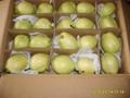 Su Pear