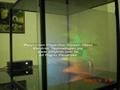 Polyscreen™ Glass—Screen Film-- display