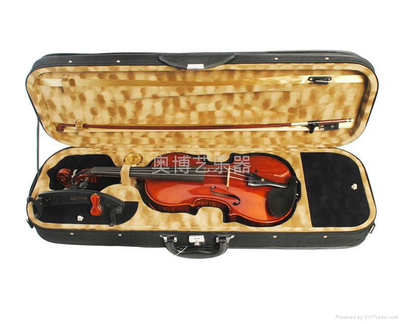 AOBOYI,violin,made in hand 1