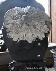 宏豐天然菊花石6