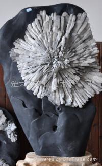 宏豐天然菊花石16 1