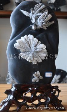 宏丰天然菊花石18 1