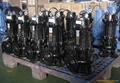 JYWQWQ自动搅匀排污泵