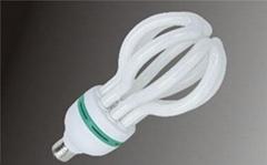 Lotus Energy Saving Lamps