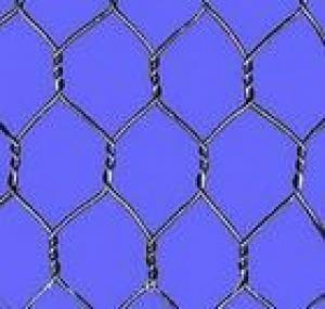 重型六角网 1