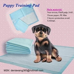 HEAVY ABSORBENT PUPPY TRAINING PADS