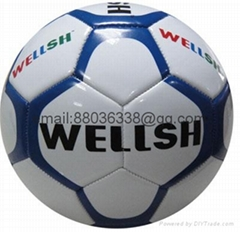 all kinds of soccer ball