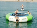 Water Trampoline/Water Game/Infltable Water(CYWG-02) 1
