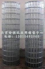 镀锌钢丝网