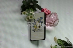 iphone4 cover zhenyuan plastic mould