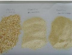 Dehydrated Garlic Granul
