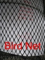 China bird netting products manufacturer 2