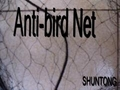 China bird netting products manufacturer 4
