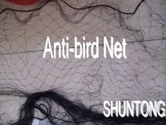 China bird netting products manufacturer 5