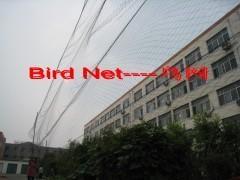 China bird netting products