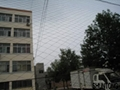 China bird netting products 3