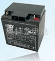 報警器 安防蓄電池