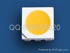 50503528高显贴片灯珠