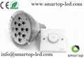 Dimmable PAR38 E27 LED Light with 9/12