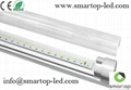 CE/RoHS-approved T10 LED Tube Light
