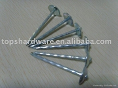 sell umbrella head roofing nails