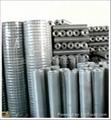 热镀锌电焊网 2