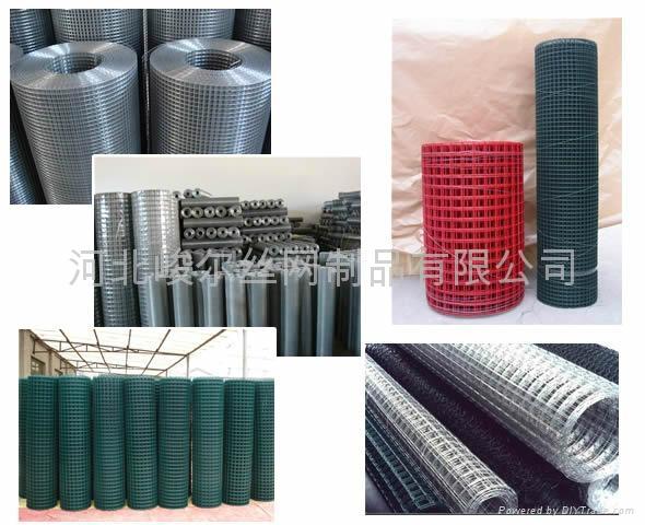 热镀锌电焊网 4