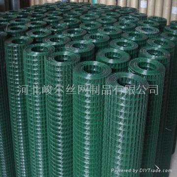 热镀锌电焊网 5