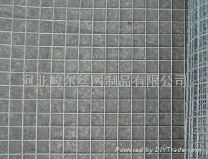 大卷电焊网 4