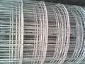 大卷电焊网 5
