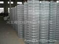 安平电焊网 5