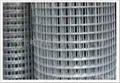 养殖电焊网 3