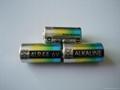 厂家供应6V/4LR44电池