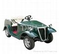 custome electric car