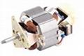 Juice extractor motor(HC68-30)