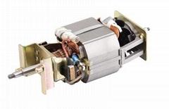 Juicer motor(HC68-40)