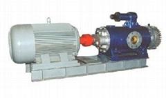 2W.W双螺杆泵