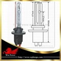 Xenon Light 880 881 for Fog Lamp
