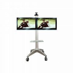WNQ-2T双屏液晶电视移动支架