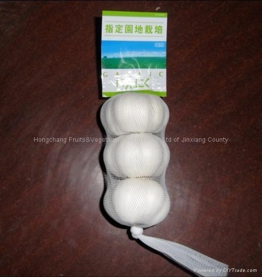 Pure white garlic 5