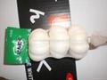 Pure white garlic 3P 4