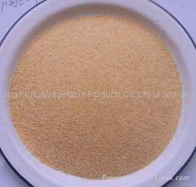 Garlic granules 2
